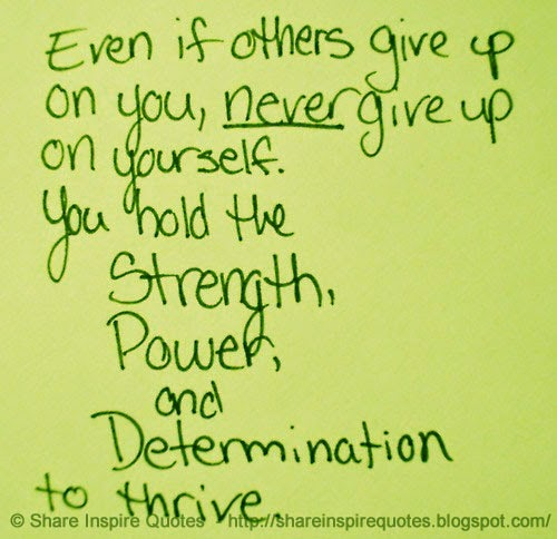 Quotes About Strength And Determination: Even If Others Give Up On You, Never Give Up On Yourself