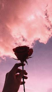 صورة سماء مع وردة شكل