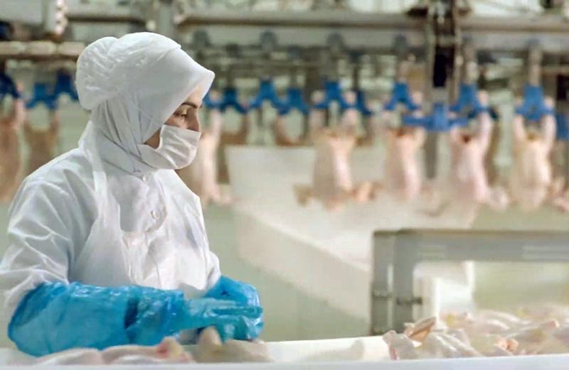 Kadın istihdam oranı Türkiye ortalamasının üzerinde olan sektör