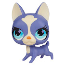 Littlest Pet Shop Singles Boston Terrier (#2750) Pet