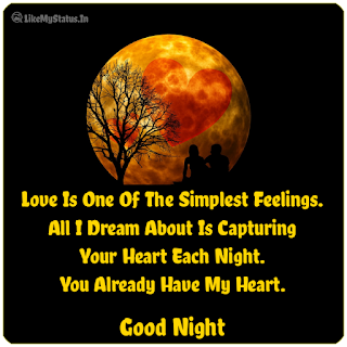 Love Is One Of The Simplest Feelings. All I Dream About Is Capturing Your Heart Each Night. You Already Have My Heart.