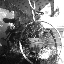 Bicycle 08