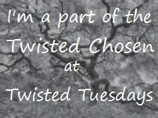 I won! at twisted Tuesdays 7th may