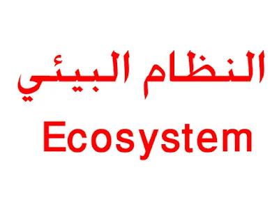 بنك الأسئلة مادة الأحياء - النظام البيئي