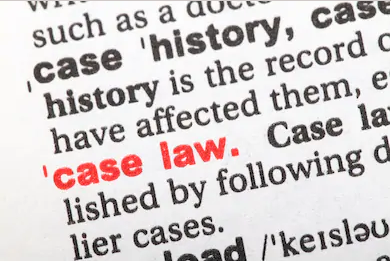 case law examples