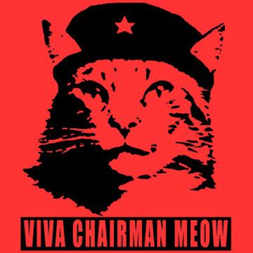 viva chairman meow