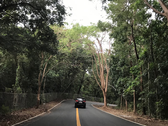 Tree-lined roads to Morong Bataan