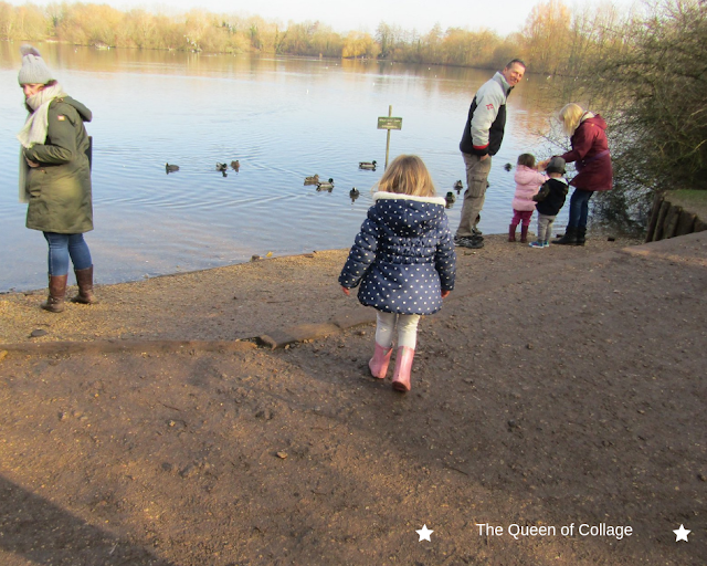 Exploring Newbury's Nature Discovery Centre