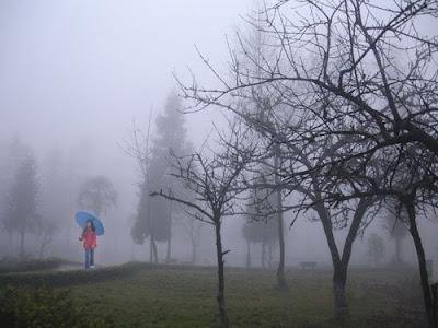 Là những mù sương