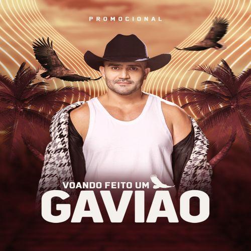 Gleydson Gavião - Voando Feito um Gavião - Promocional de Agosto - 2020
