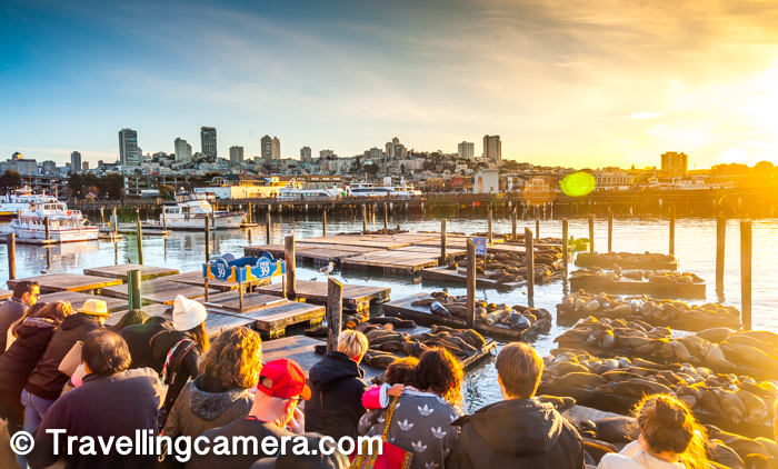 1. Visiting the deck at Pier-39 to see hundreds of Sea Lions making noise and lazying around.    Many times I wondered why people stay at this time for long time because this place also stinks a lot and the level of stink depends how many Sea Lions are opening their mouth and making noise.