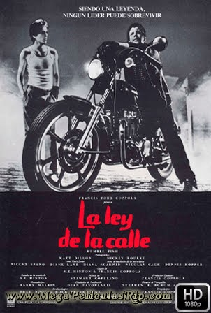 La Ley De La Calle [1080p] [Latino-Ingles] [MEGA]