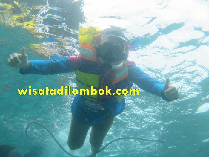 Tour Harian Pantai Pink Lombok