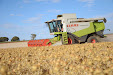 Claas Lexion 540. Harvesting thistles