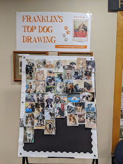Top dog photos as of March 2, 2020