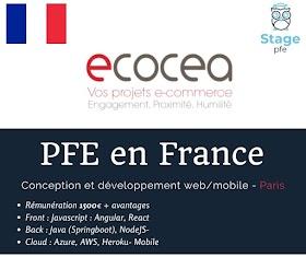 [PFE en France] Stage de fin d'études ingénieur(e) (6 mois) - Conception et développement web/mobile - Paris