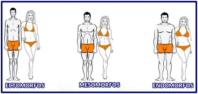 Formas de saber si una persona es ectomorfa, mesomorfa o endomorfa