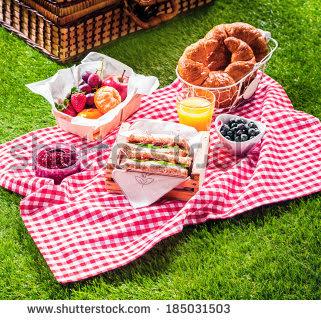 Kita Piknik, Yuk!