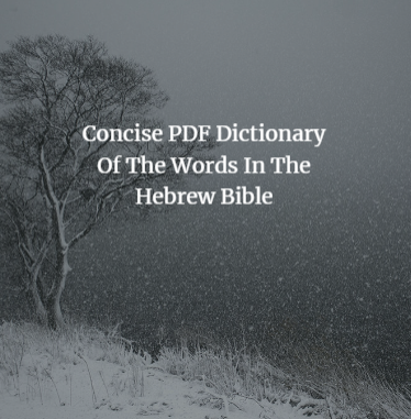 Concise PDF Dictionary Of The Words In The Hebrew Bible