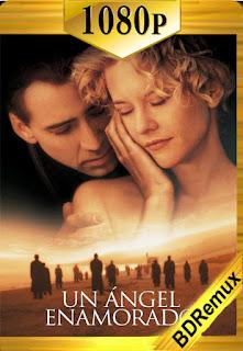 Un ángel enamorado (1998) [1080p BD REMUX] [Latino-Inglés] [LaPipiotaHD]