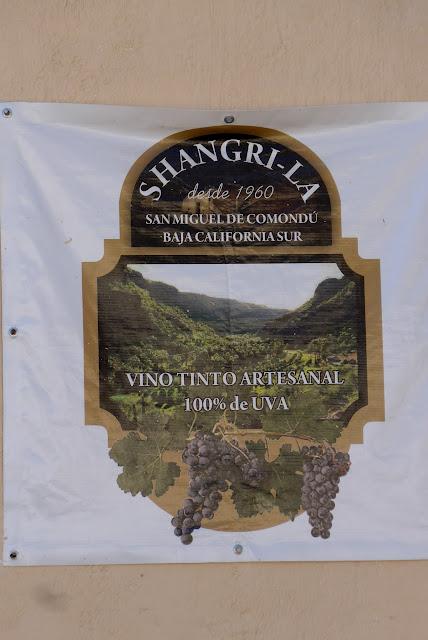 Shangri-La Winery, Vino Tinto Artesanal 100% UVA desde 1960. San Miguel de Comondu Baja California Sur