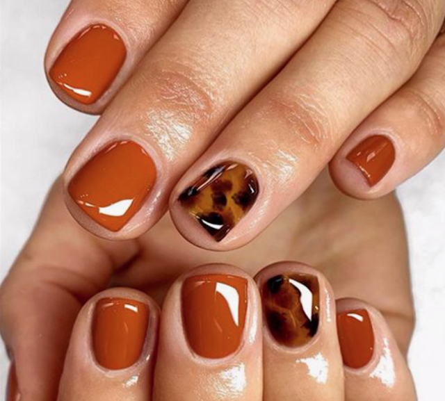 Tortoise shell fall nail color