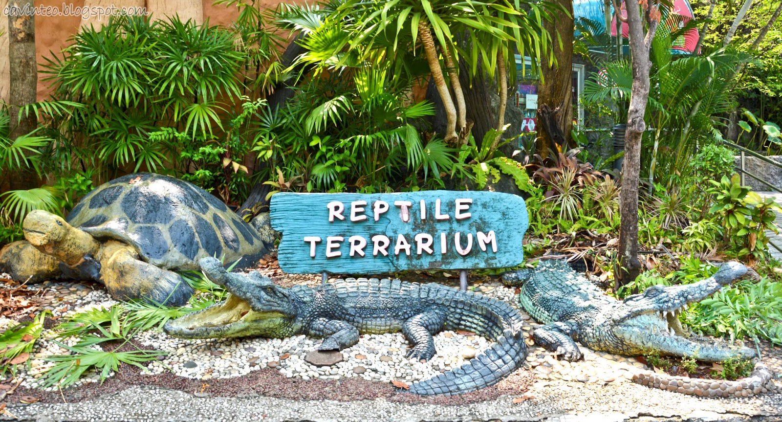 Entree Kibbles: Reptile Terrarium House @ Dusit Zoo [Bangkok]