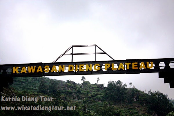 tour and travel ke dieng