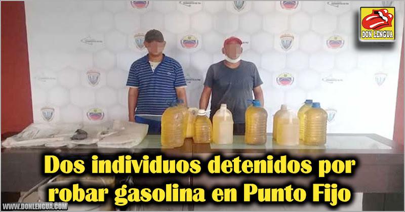 Dos individuos detenidos por robar gasolina en Punto Fijo
