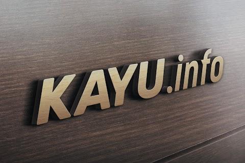 Kayu Dot Info