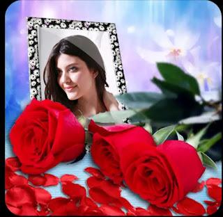 Rose day 2021,rose day shayari 2021,rose day photo frame,rose day photo frames 2021,rose day special,rose day wishes,rose day wish