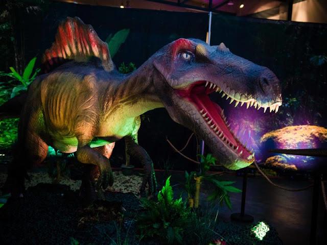 Dinosaur time!