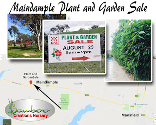 Bamboo creations victoria are attending the Maindample plant and garden sale in August 2019