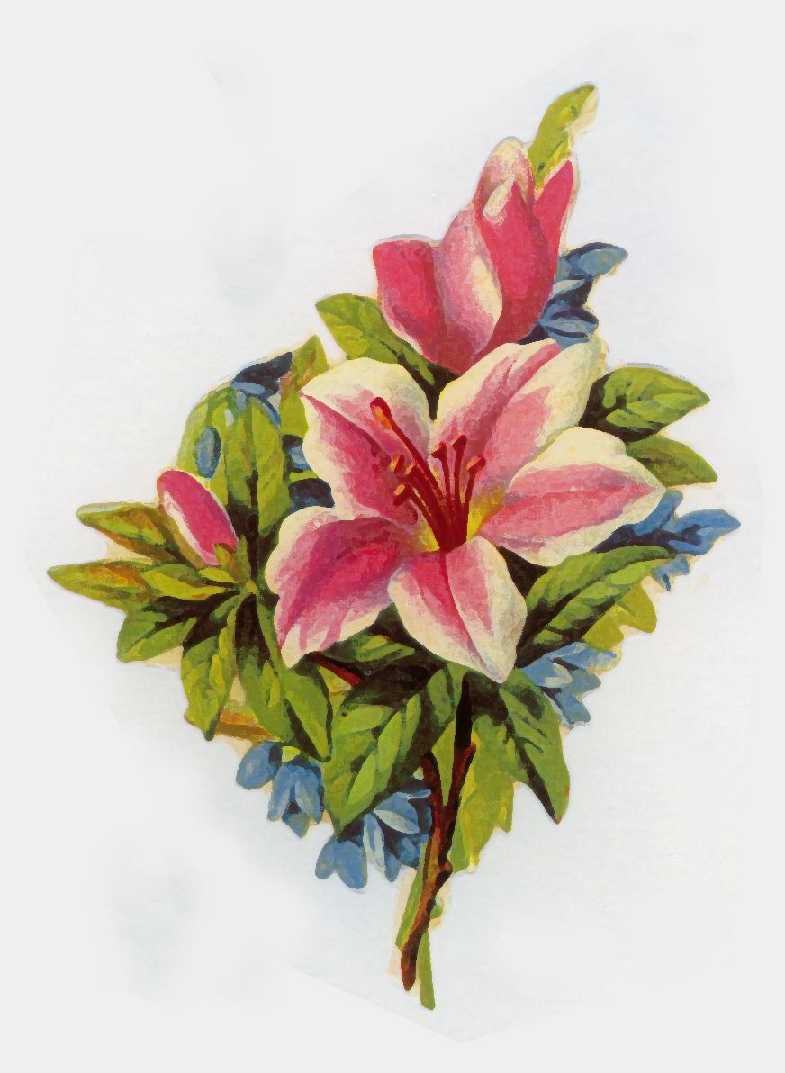Vintage Flower Art 62