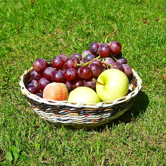pleciony koszyk na owoce