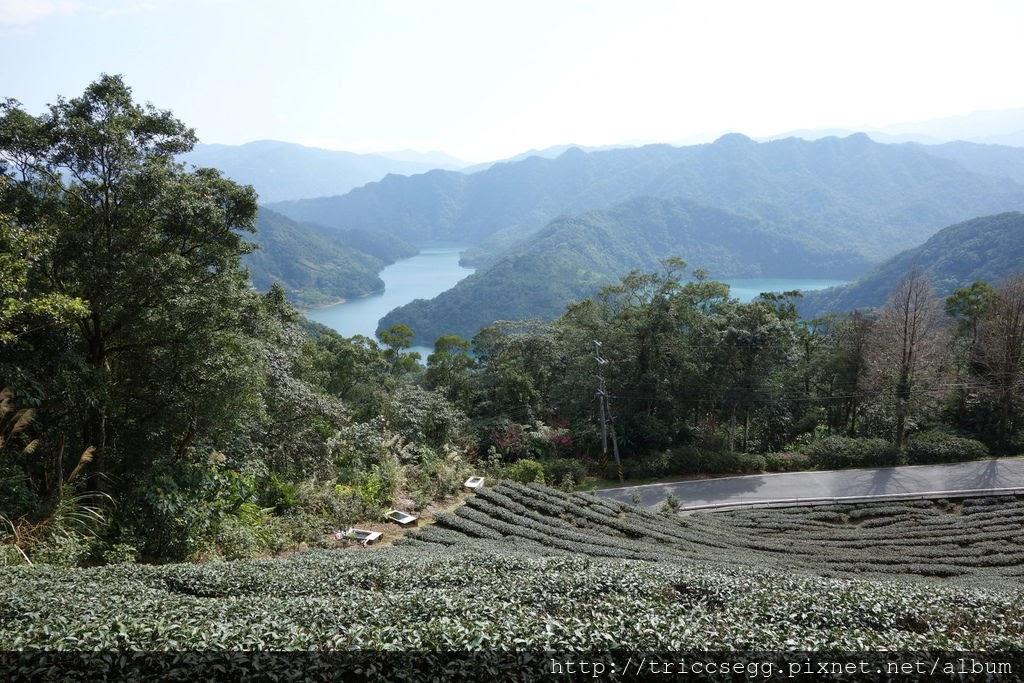 石碇千島湖(8).jpg