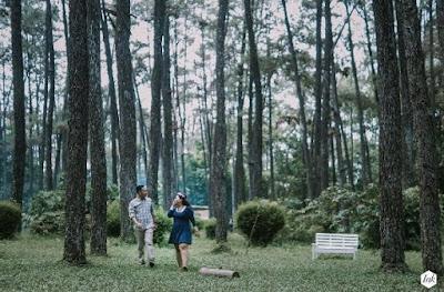 Hutan Punti Kayu Palembang