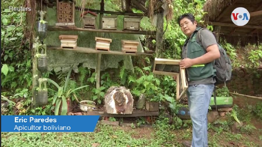 El apicultor Eric Paredes trabaja con su esposa Cinthya Callisaya en Las Orquídeas / REUTERS / VOA