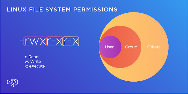 How to change user/group, permission with magento 2, nginx, php-fpm