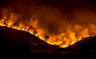 https://commons.wikimedia.org/wiki/File:Woolsey_Fire_-_tree_ridge_in_flames_20181119-PB-008.jpg