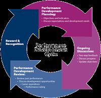 Performance Development Cycle