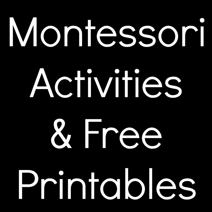 Montessori Activities and Free Printables