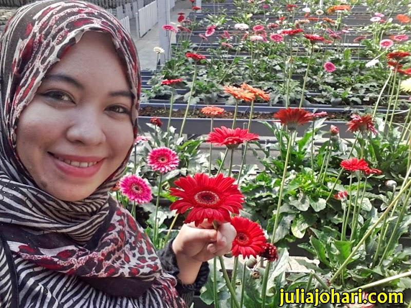 Awak Terima Kasih! Nah Bunga!