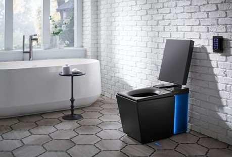 Toilet Super Canggih, Bisa Pijat dan Deteksi Penyakit