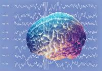 أثر الطاقة وأمواج الدماغ في الكائن والمكان