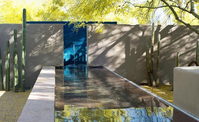 Gradina modernista - gradina exotica Steve Martino