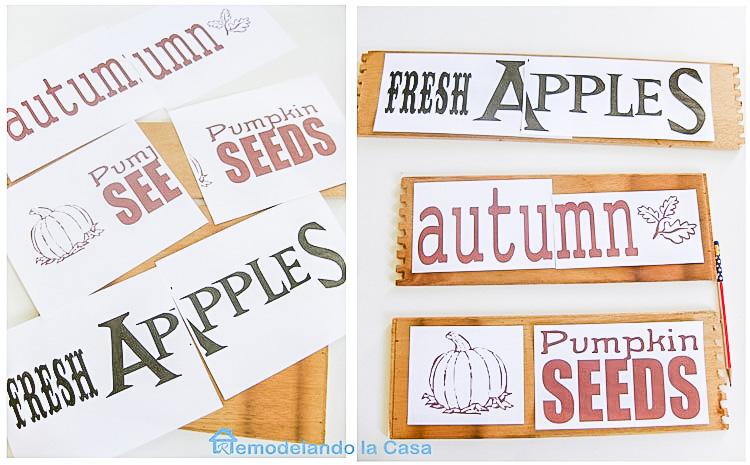 Autumn, Fresh Apples, Pumpkin seeds