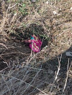 अज्ञात महिला ने शिशु को जन्म देकर झाड़ियों के पास फेंक कर हुई फरार