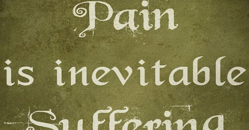 You Re Right People Do Lie And Cheat And Stab You In: Pain Is Inevitable. Suffering Is Optional.