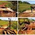 Rio Bonito do Iguaçu - Prefeitura reconstrói ponte na comunidade Linha Rosa